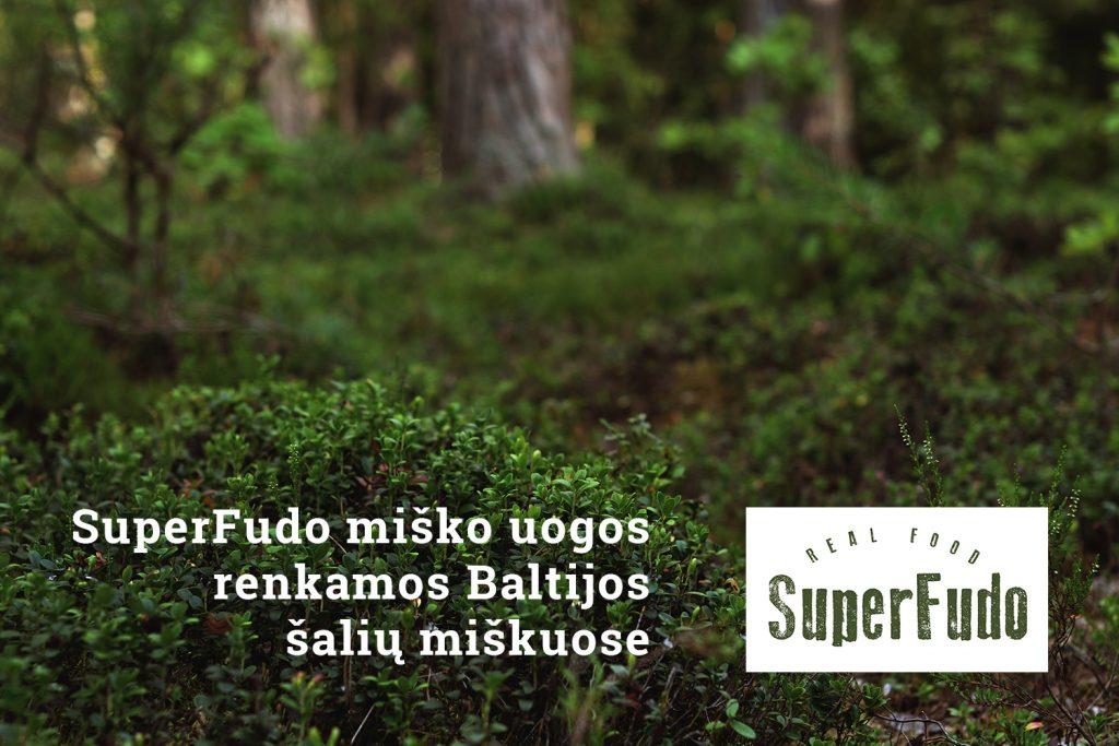 superfudo renkama baltijos saliu miskuose